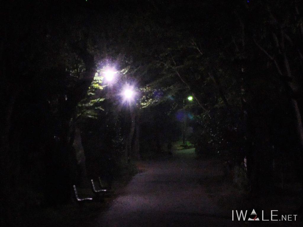 toyama-park_002