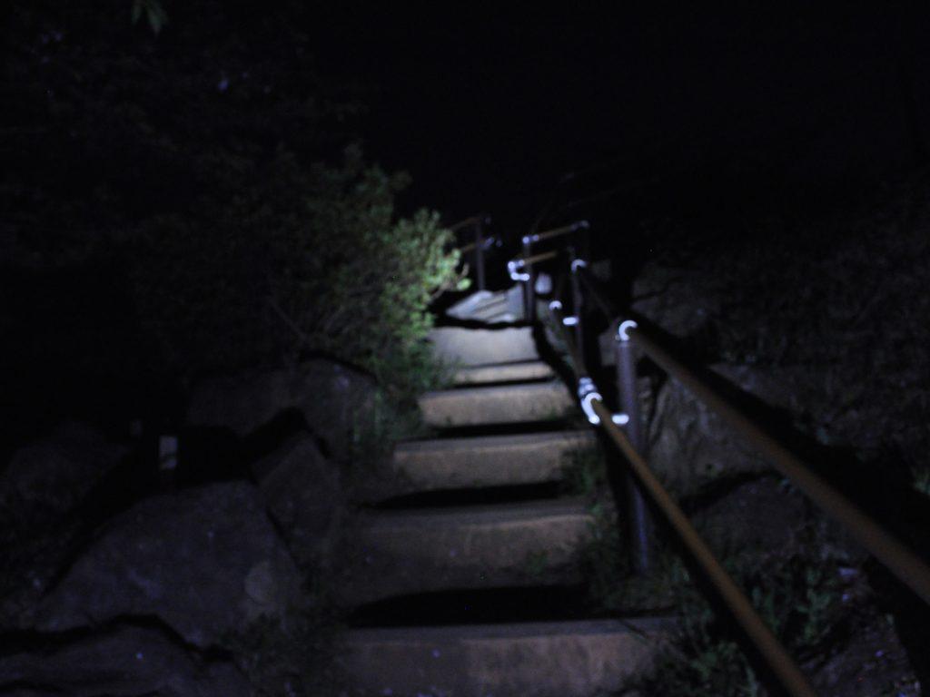 toyama-park_008