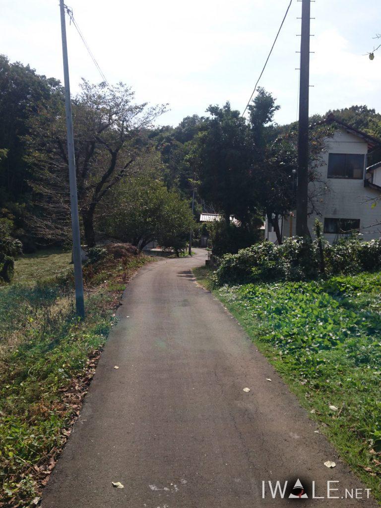 sayamako_03spot_04-768x1024